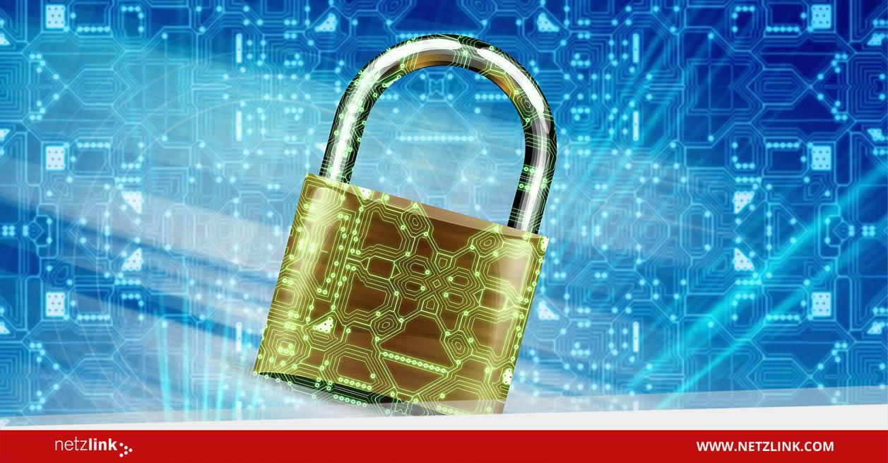 IT-Sicherheit Interview von Netzlink